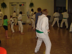 Tang Soo Do Clinic