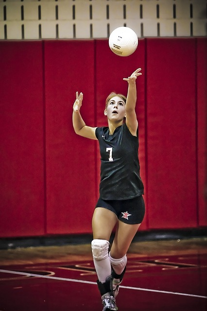 volleyball-1562277_640